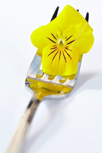 A yellow pansy on a fork