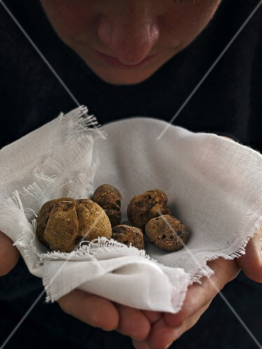 White truffles on a white cloth