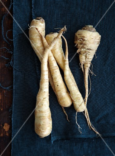 Whole Parsnips on a Dish
