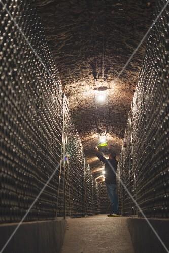 Jordi Mata Degorgierer in the cava cellar of the Recaredo winery (in El Penedes, Spain)