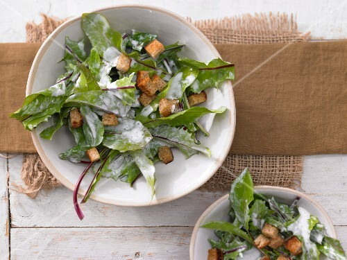 Dandelion salad with sour cream sauce and croutons
