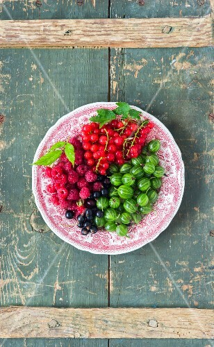 Fresh berries on a pink plate (seen from above)