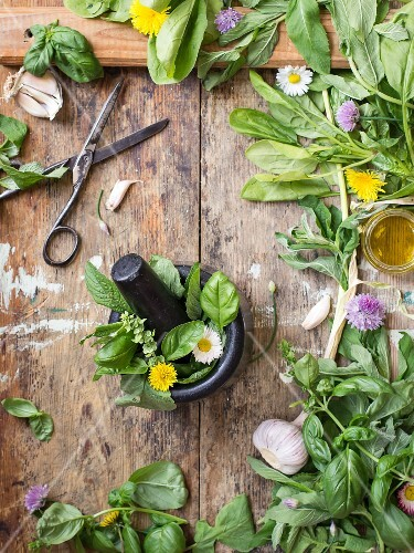 Ingredients for pesto: fresh herbs, garlic and olive oil