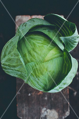 A cabbage (seen from above)
