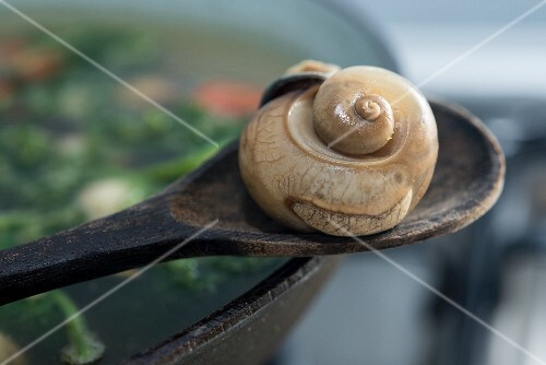 An edible snail on a wooden spoon