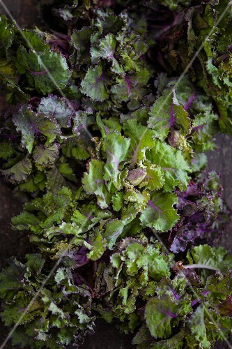 Flower sprouts (a cross between Brussels sprouts and kale)