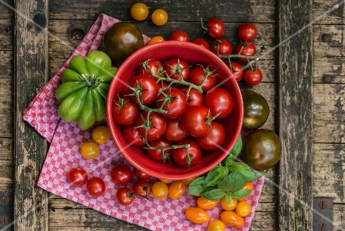 Assorted tomatoes in a bowl and on a tea towel