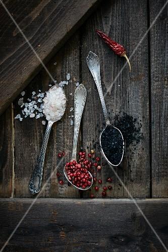 Sea salt, red pepper and black volcanic salt on spoons