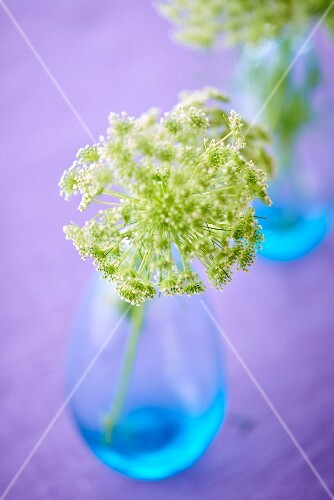 Vase of flowers on wedding buffet table