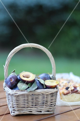 Plums in a basket in front of a plum cake on a garden table