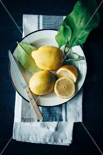 Lemons with leaves on an enamel plate