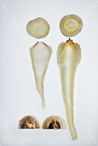 A comparison between parsnip and Hamburg parsley