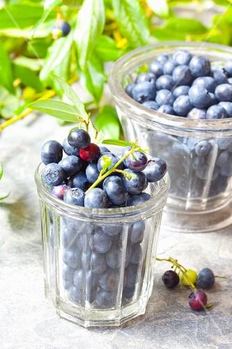 Blueberries in glass jars