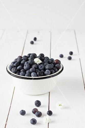 Blueberries in an enamel bowl