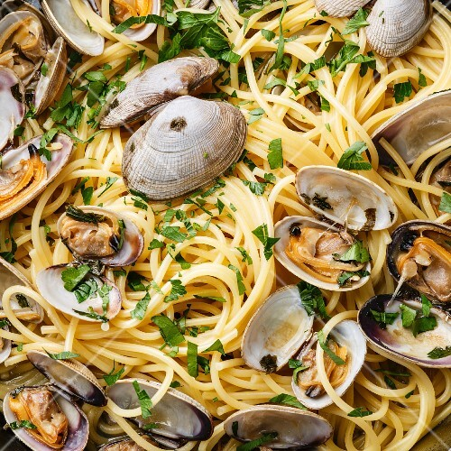 Spaghetti alle Vongole Seafood pasta with clams close up