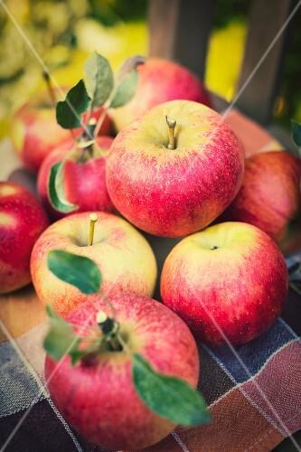 Fresh Idared apples