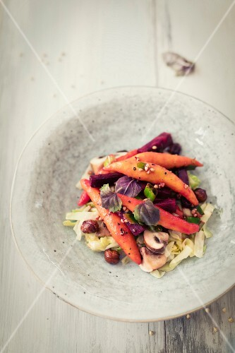 Pumpkin dumpling with beetroot and mushrooms on a bed of pointed cabbage
