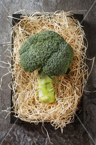 Broccoli on straw (seen from above)
