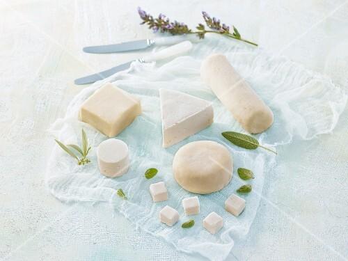 Different types of vegan cheese: macadamia nut cheese, pecan nut cheese and cashew nut cheese