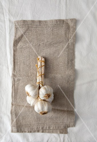 Garlic bulbs tied together on a linen cloth (seen from above)
