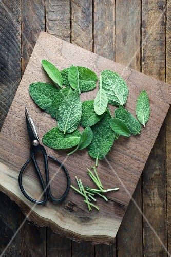 Cut sage leaves