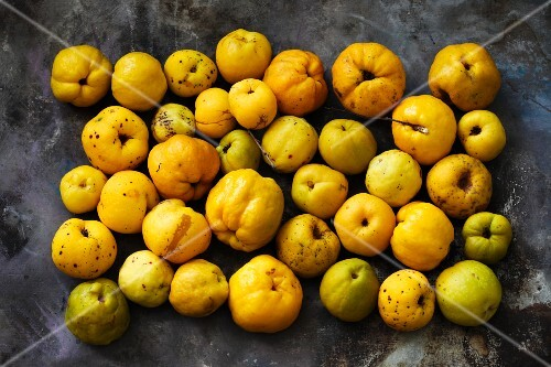 Lots of quinces (seen from above)