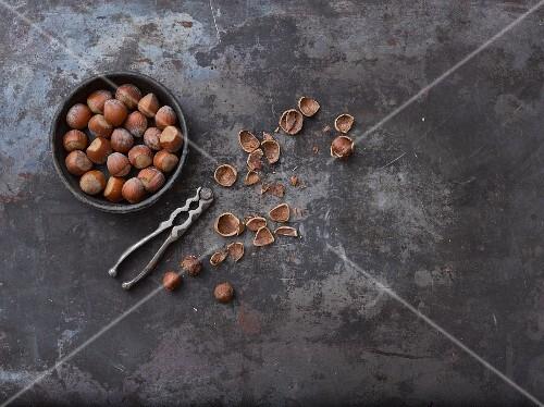 Whole hazelnuts, nut shells and hazelnut seeds