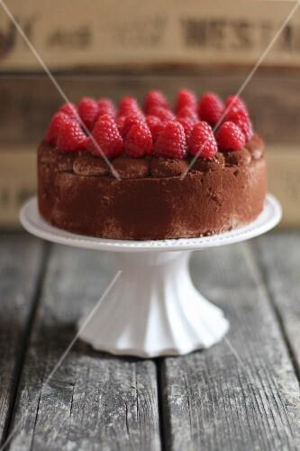 Chocolate Cake on Cake Stand with Raspberry Garnish; Roses