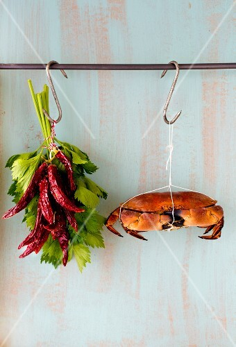 A crab, dried chilli peppers and fresh herbs hanging from hooks