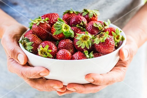 Hands holding bowl of fresh strawberries