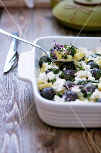 Brussels sprout and potato bake with cottage cheese and cress