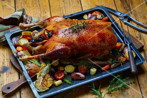 Roast goose with vegetables on an oven tray