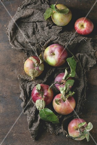 Apples with leaves on a rustic brown linen cloth