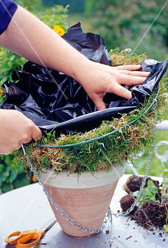 Hanging Basket Bepflanzen Korb Mit Bild Kaufen 12110734