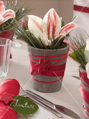 Weihnachtliche Tischdeko Mit Amaryllis Bild Kaufen 12148850