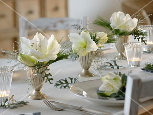 Festliche Amaryllis Tischdeko In Weiss Bild Kaufen 12162148