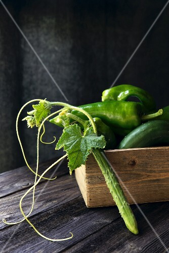 Cucumbers and chillies