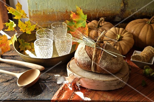 Fall Diner Celebration In The Country License Images Stockfood