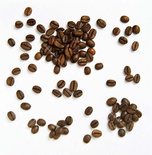 Coffee Bean Still Life