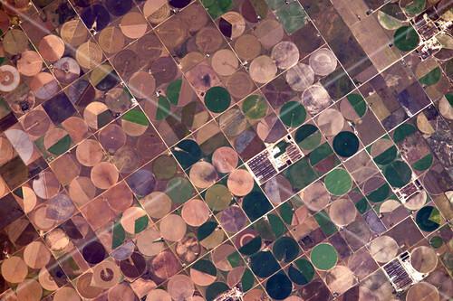 Centre pivot irrigation, USA, ISS image