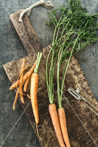 Fresh carrots on a wooden board, partially peeled