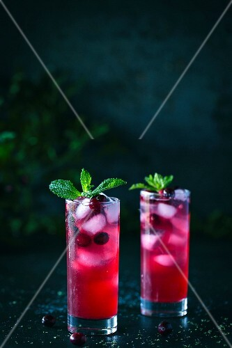 Two glasses of Cranberry and Mint Rum Punch with mint garnish and ice are displayed in a dark background