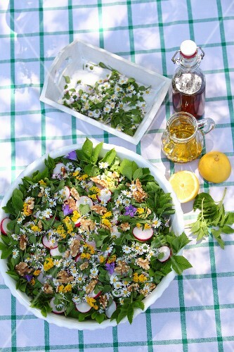Ingredients for homemade lemonade with apple juice, wild plants and lemons