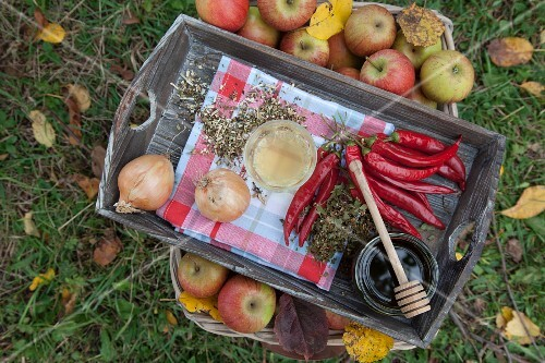 Onions, chillies, apple cider, honey and herbs on a wooden tray