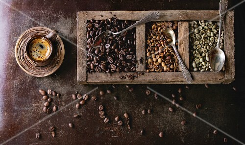 Green and brown decaf unroasted and black roasted coffee beans in old wooden box, and ceramic cup of fresh making coffee