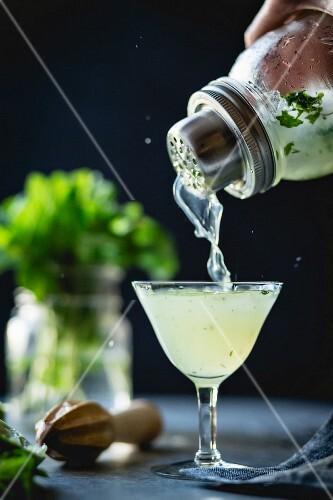 Cocktail mit Gin, Limette und Minze wird aus Cocktailshaker in Glas gegossen