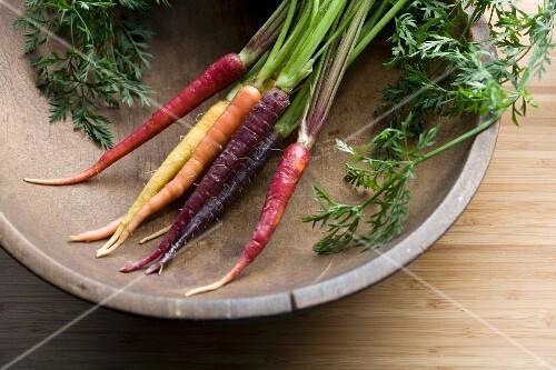 Verschiedenfarbige Karotten in einer alten Holzschale