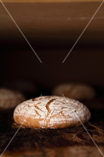 Rye-wheat bread in the oven - the volume increases and the crust starts turning light brown