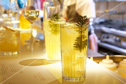Himalayan pine cocktails in a bar