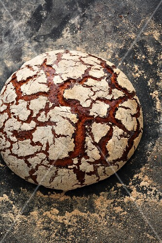 'Frankenlaib', a classic bread from the Franken region of Bavaria, made with spices